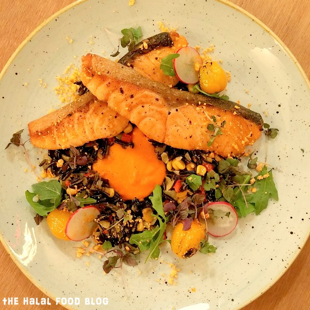 Salmon with Wild Rice 02